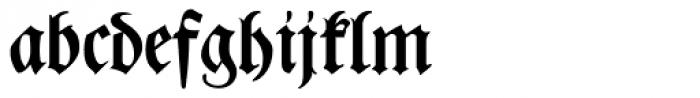 Leibniz Fraktur Pro Font LOWERCASE