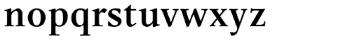 Leiden DT ExtraBold Font LOWERCASE