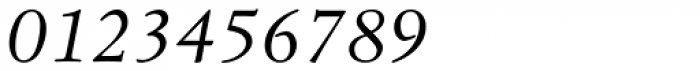 Leiden DT Italic Font OTHER CHARS