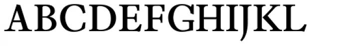 Leidener Bold Font UPPERCASE