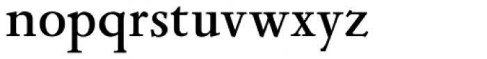 Leidener Bold Font LOWERCASE