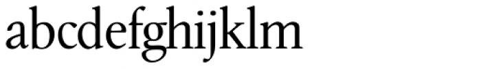 Leighton RR Light Font LOWERCASE