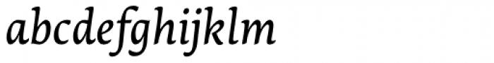 Lemon Serif Italic Font LOWERCASE