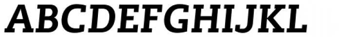 Lev Serif Bold Italic Font UPPERCASE