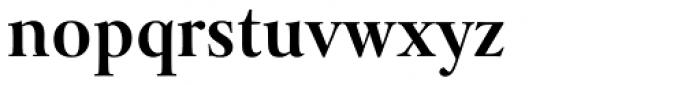 Levato Pro Bold Font LOWERCASE