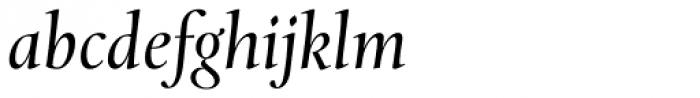 Levato Pro Italic Font LOWERCASE