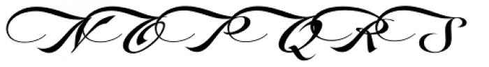 LHF Marie Script Classic Font UPPERCASE