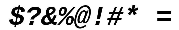 Liberation Mono Bold Italic Font OTHER CHARS