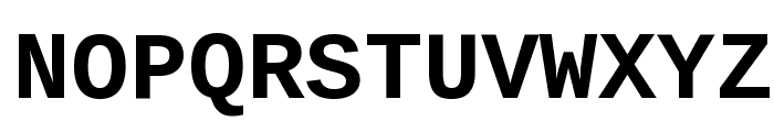 Liberation Mono Bold Font UPPERCASE
