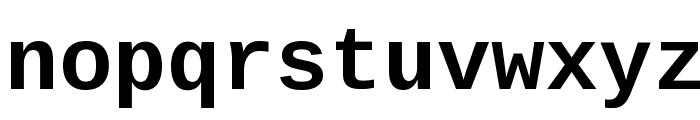 Liberation Mono Bold Font LOWERCASE