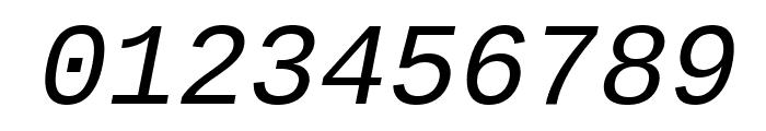 Liberation Mono Italic Font OTHER CHARS