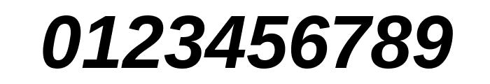 Liberation Sans Bold Italic Font OTHER CHARS