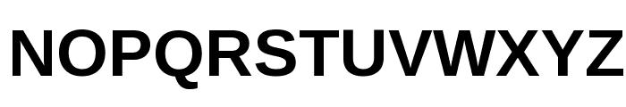 Liberation Sans Bold Font UPPERCASE