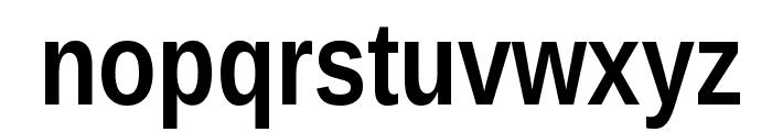 Liberation Sans Narrow Bold Font LOWERCASE