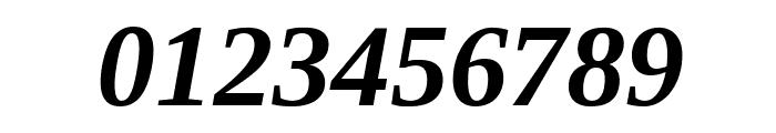 Liberation Serif Bold Italic Font OTHER CHARS