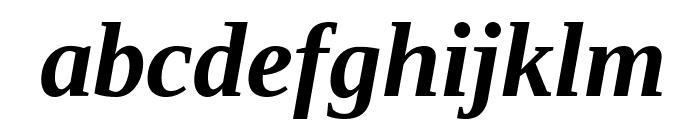 Liberation Serif Bold Italic Font LOWERCASE