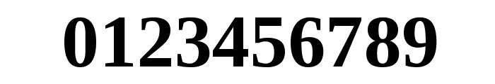 Liberation Serif Bold Font OTHER CHARS
