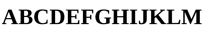 Liberation Serif Bold Font UPPERCASE