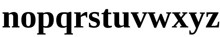 Liberation Serif Bold Font LOWERCASE