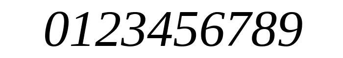 Liberation Serif Italic Font OTHER CHARS