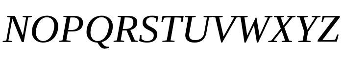 Liberation Serif Italic Font UPPERCASE