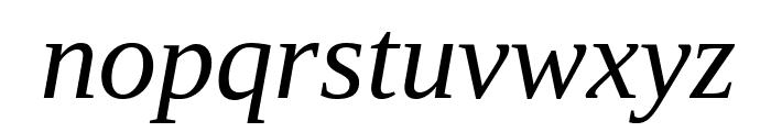 Liberation Serif Italic Font LOWERCASE