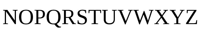 Liberation Serif Regular Font UPPERCASE