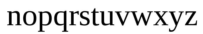Liberation Serif Regular Font LOWERCASE