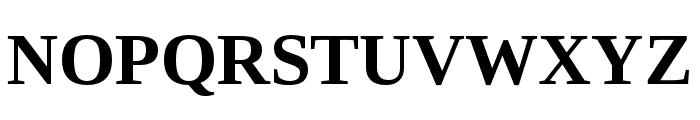 LibraSerifModern-Bold Font UPPERCASE