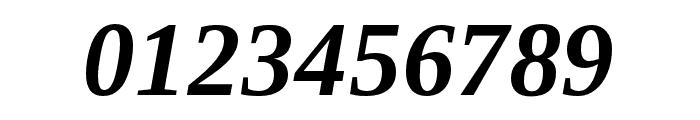 LibraSerifModern-BoldItalic Font OTHER CHARS