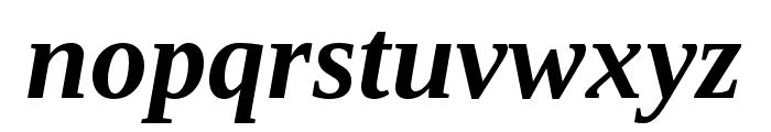 LibraSerifModern-BoldItalic Font LOWERCASE