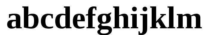 LibraSerifModern-Bold Font LOWERCASE