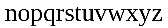 LibraSerifModern-Regular Font LOWERCASE