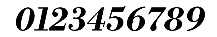 Libre Bodoni Bold Italic Font OTHER CHARS