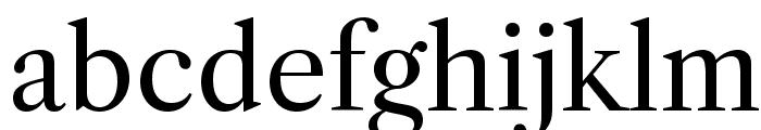 Libre Caslon Text Font LOWERCASE