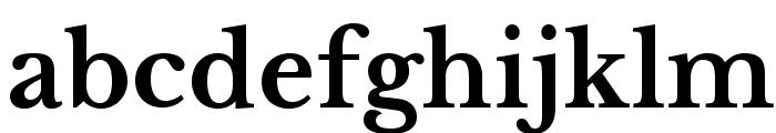 LibreBaskerville-Bold Font LOWERCASE