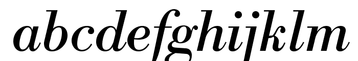 LibreBodoni-Italic Font LOWERCASE