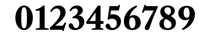 LibreCaslonText-Bold Font OTHER CHARS