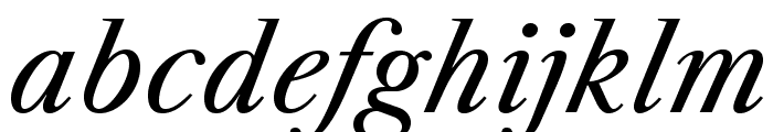 LibreCaslonText-Italic Font LOWERCASE