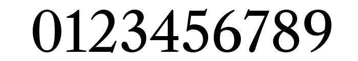 LibreCaslonText-Regular Font OTHER CHARS