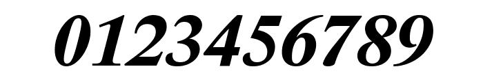 Lido STF CE Bold Italic Font OTHER CHARS