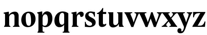 Lido STF CE Bold Font LOWERCASE