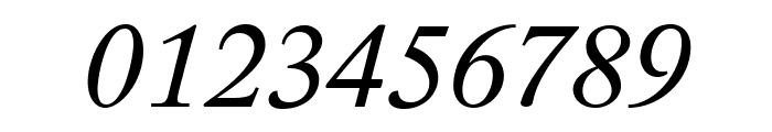 Lido STF CE Italic Font OTHER CHARS