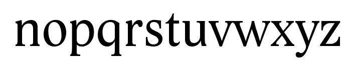 Lido STF CE Font LOWERCASE