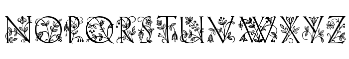 Lilith Plain Font UPPERCASE