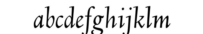 Linden Hill TT Italic Font LOWERCASE