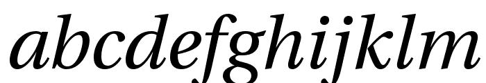 LinguisticsPro-Italic Font LOWERCASE