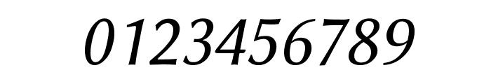 Linux Biolinum Capitals Italic Font OTHER CHARS