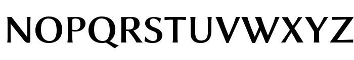 Linux Biolinum O Bold Font UPPERCASE