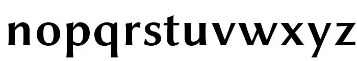 Linux Biolinum O Bold Font LOWERCASE
